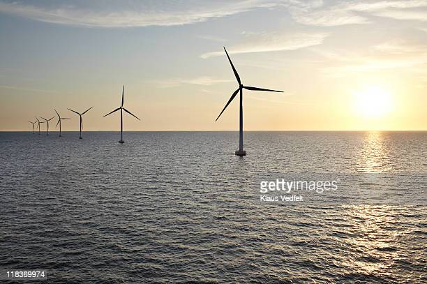 Row of winturbines in the sea during sunset