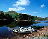 Rowboats near lake