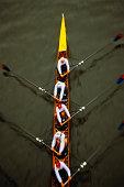 Rowing crew, overhead view