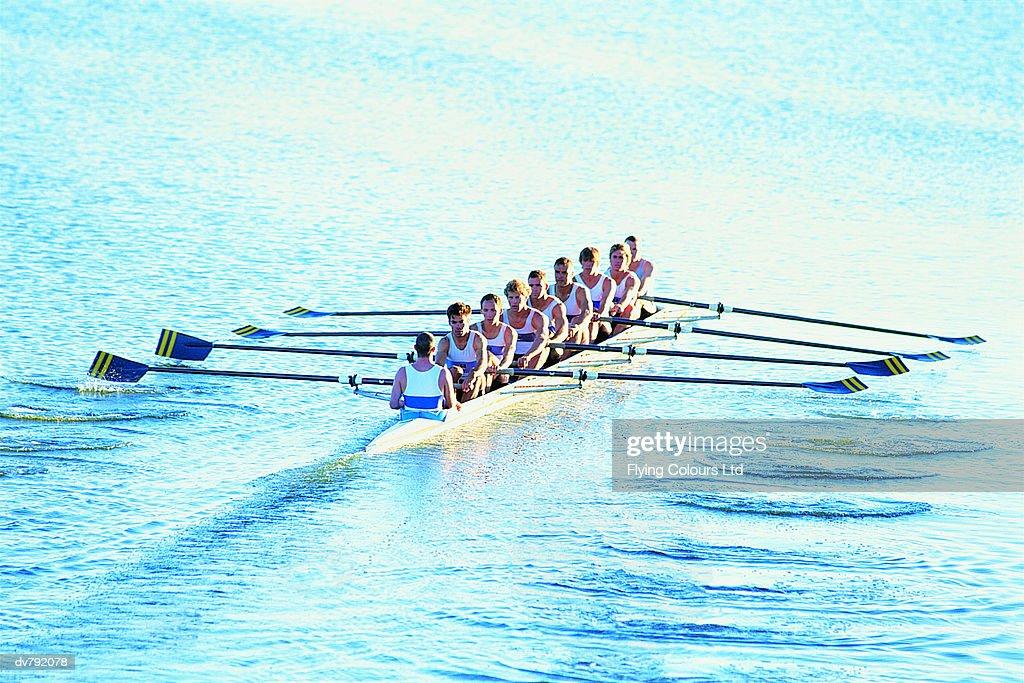Rowing Team : Stock Photo