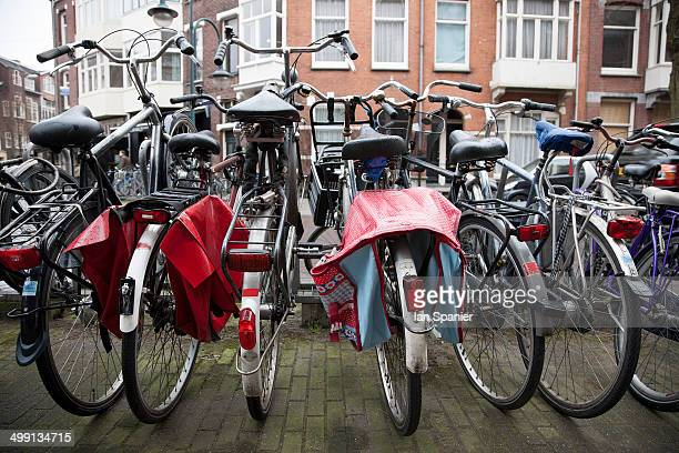 Rows of bicycles, Amsterdam, Netherlands