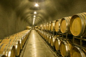 Rows of oak wine barrels line a cave on September 24 near Santa Rosa California The annual grape harvest is a favorite among an estimated 20 million...