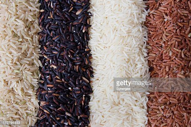 Rows of rice