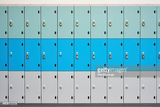 Rows of school lockers with doors closed