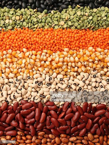 Reihen von Samen