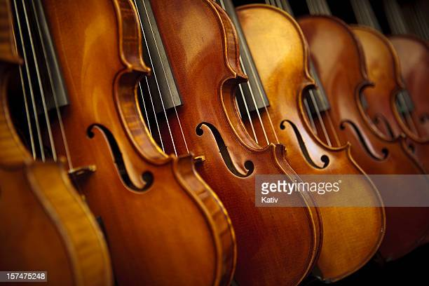 Rows of violins