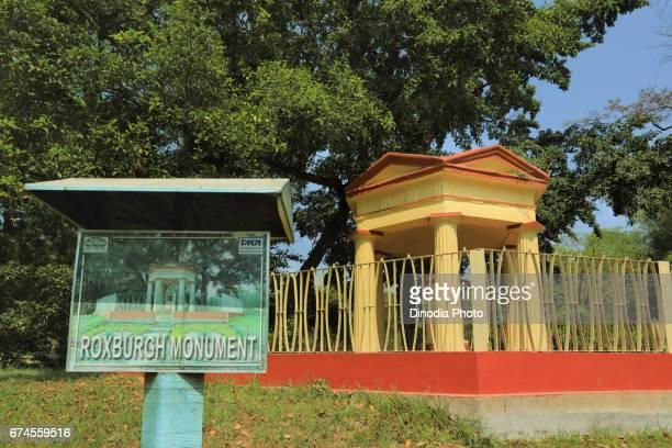 Roxburgh monument, indian botanic garden, west bengal, india, asia
