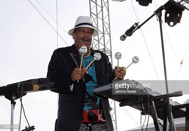Roy Ayers performs at the 4th Annual Jazz in the Gardens at Dolphin Stadium on March 28 2009 in Miami Florida