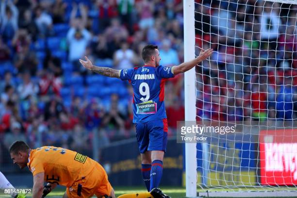 Roy O'Donovan of the Jets celebrates a goal during the round two ALeague match between the Newcastle Jets and the Perth Glory at McDonald Jones...
