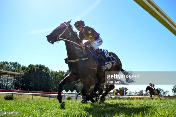 Roycey ridden by Trent Germaine wins the CBRE Agribusiness Handicap at Terang Racecourse on March 02 2017 in Terang Australia