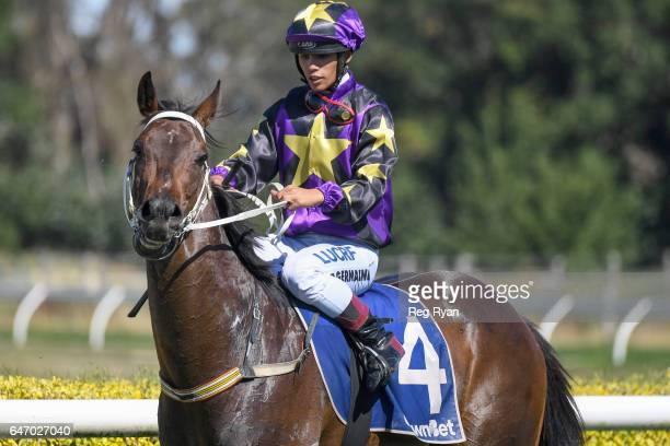 Roycey wins the CBRE Agribusiness Handicap at Terang Racecourse on March 02 2017 in Terang Australia