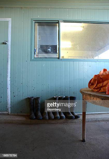 Rubber boots stand against a wall in the milking parlor at Pearson's Farm north of Moama New South Wales Australia on Thursday April 18 2013 Farmers...