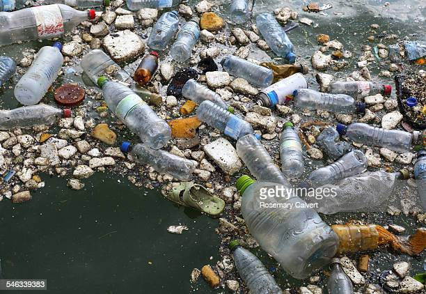 Rubbish floating in Naifaru Harbour Maldives Indian Ocean 25th January 2015