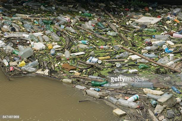 Rubbish in the waters of the Danube River in an industrial part of Belgrade Republic of Serbia