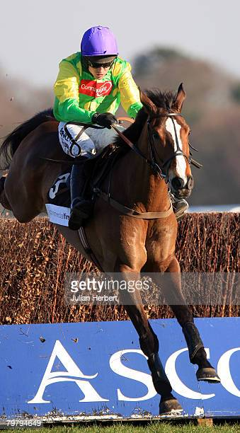 Ruby Walsh and Kauto Star clear the last fence to land The Commercial First Ascot Steeple Chase Race run at Ascot Racecourse on February 16 in Ascot...