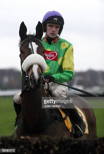 Ruby Walsh and Kauto Star look at a fence before winning The Betfair Steeple Chase Race run at Haydock Park Racecourse on November 21 2009 in Haydock...