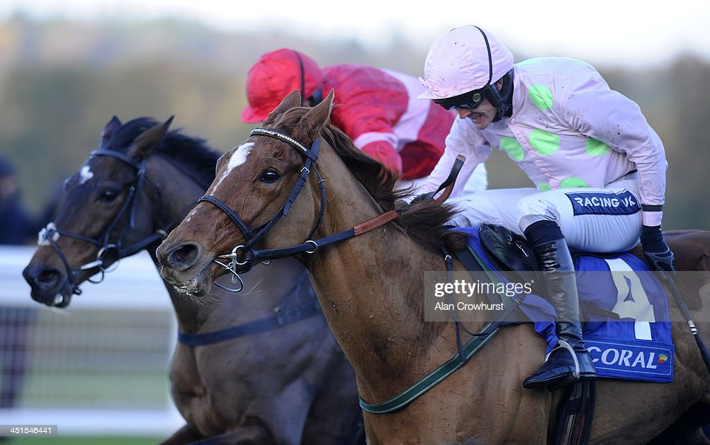 <a gi-track='captionPersonalityLinkClicked' href=/galleries/search?phrase=Ruby+Walsh&family=editorial&specificpeople=171838 ng-click='$event.stopPropagation()'>Ruby Walsh</a> riding Annie Power (R) clear the last to win The Coral Hurdle Race from Zarkandar (L) at Ascot racecourse on November 23, 2013 in Ascot, England.