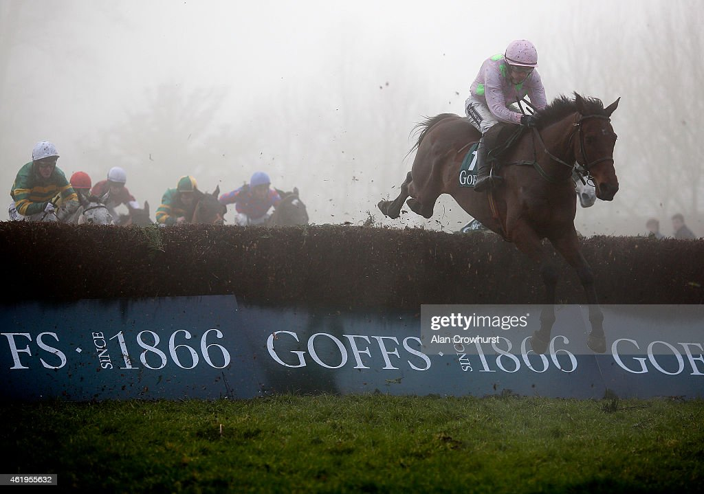 Ruby Walsh riding Djakadam on their way to winning The Goffs Tyhestes Handicap Steeple Chase at Gowran Park racecourse on January 22, 2015 in Kilkenny, Ireland.