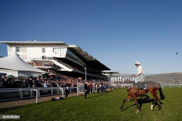 Ruby Walsh riding Douvan after finishing down the field in The Betway Quenn Mother Champion Chase at Cheltenham racecourse on day two of the festival...