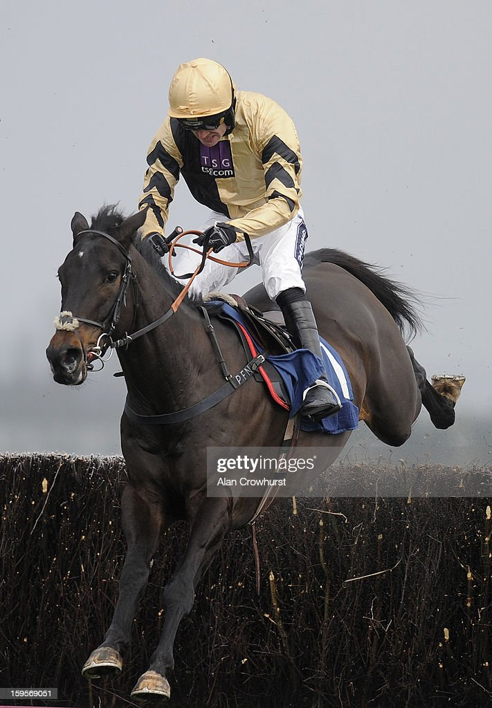 Ruby Walsh riding Fago clear the last to win the Betfred Double Delight Novices' Steeple Chase at Newbury racecourse on January 16, 2013 in Newbury, England.