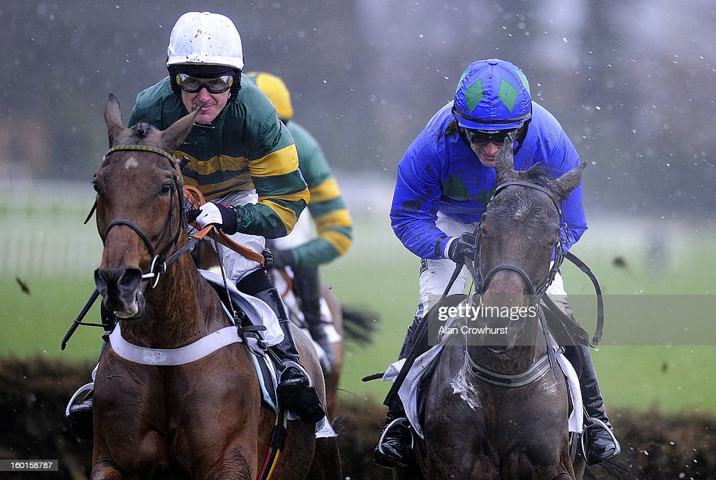 Ruby Walsh riding Hurricane Fly (R) clear the first flight of hurdles with Binocular and Tony McCoy before winning The BHP Insurance Irish Champion Hurdle at Leopardstown racecourse on January 27, 2013 in Dublin, Ireland.