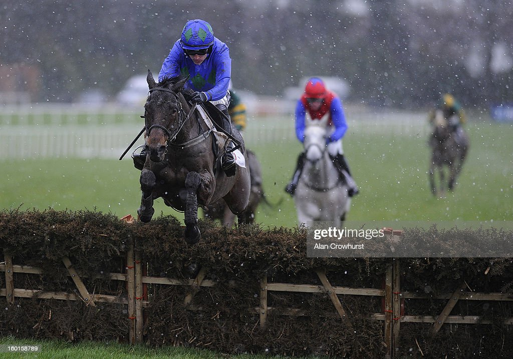 Ruby Walsh riding Hurricane Fly clear the last to win The BHP Insurance Irish Champion Hurdle at Leopardstown racecourse on January 27, 2013 in Dublin, Ireland.