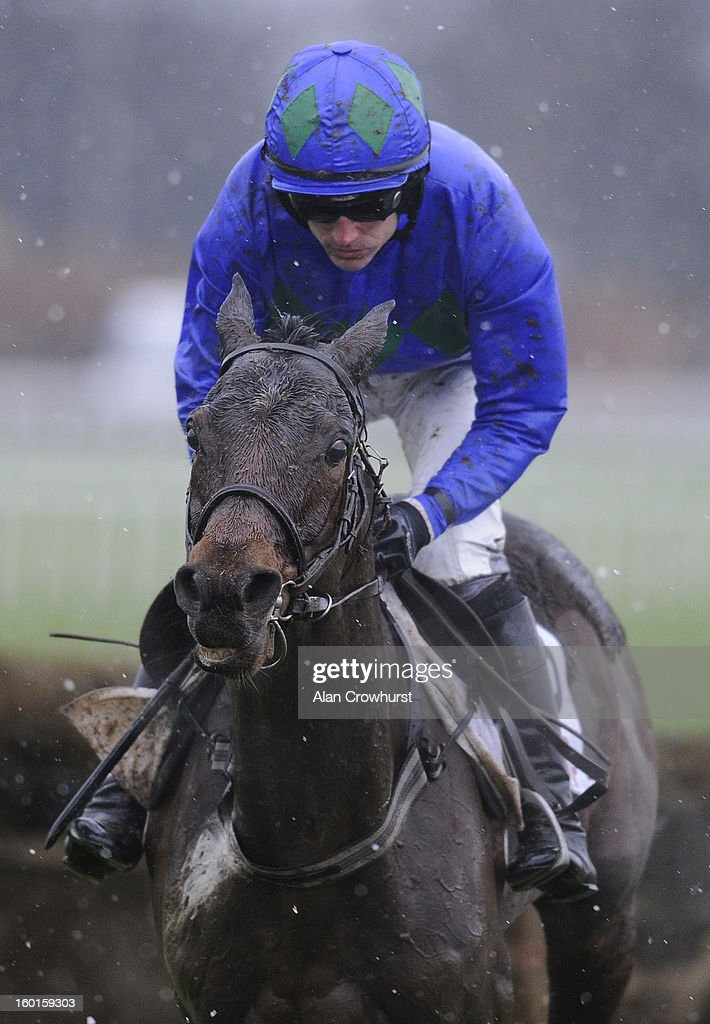 <a gi-track='captionPersonalityLinkClicked' href=/galleries/search?phrase=Ruby+Walsh&family=editorial&specificpeople=171838 ng-click='$event.stopPropagation()'>Ruby Walsh</a> riding Hurricane Fly clear the last to win The BHP Insurance Irish Champion Hurdle at Leopardstown racecourse on January 27, 2013 in Dublin, Ireland.