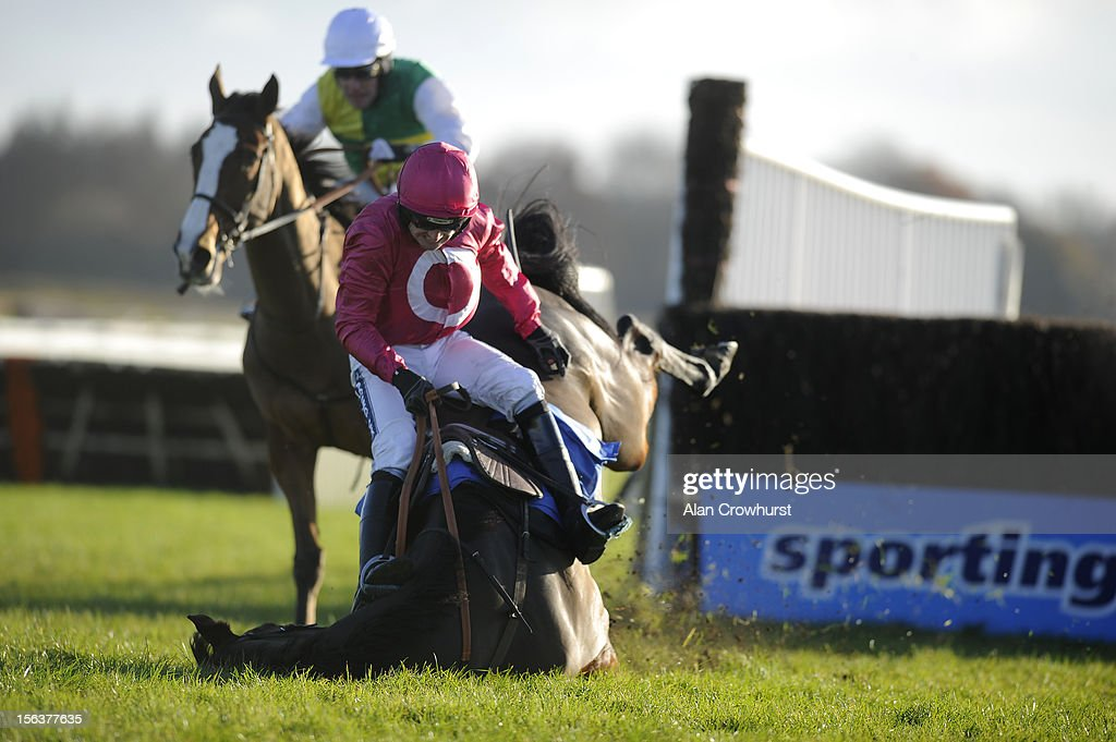 <a gi-track='captionPersonalityLinkClicked' href=/galleries/search?phrase=Ruby+Walsh&family=editorial&specificpeople=171838 ng-click='$event.stopPropagation()'>Ruby Walsh</a> riding Keppols Hill fall at the last in The Racing Welfare Jonny Brown Novice' Steeple Chase at Exeter racecourse on November 14, 2012 in Exeter, England.