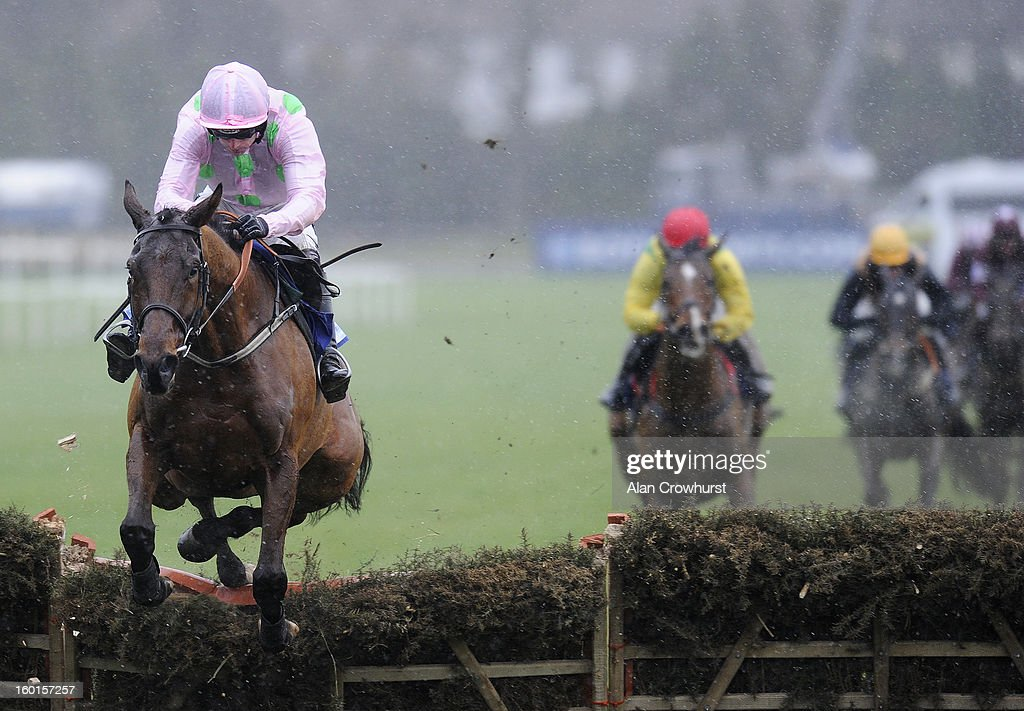 Ruby Walsh riding Pont Alexandre clear the last to win The Synergy Security Solutions Novice Hurdle at Leopardstown racecourse on January 27, 2013 in Dublin, Ireland.