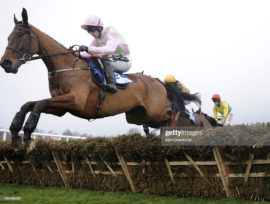 <a gi-track='captionPersonalityLinkClicked' href=/galleries/search?phrase=Ruby+Walsh&family=editorial&specificpeople=171838 ng-click='$event.stopPropagation()'>Ruby Walsh</a> riding Pont Alexandre on their way to winning The Synergy Security Solutions Novice Hurdle at Leopardstown racecourse on January 27, 2013 in Dublin, Ireland.