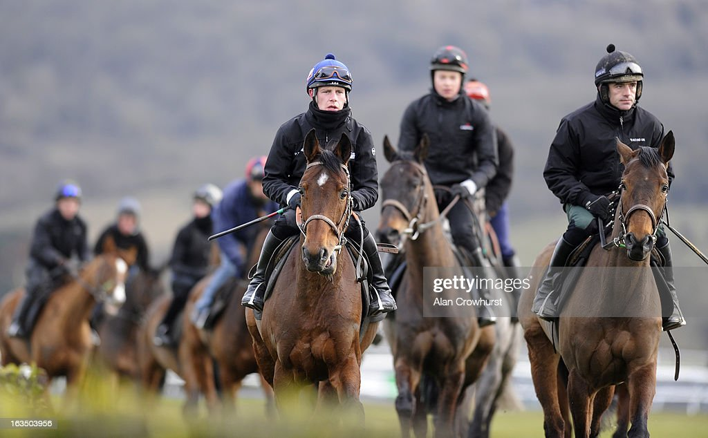 Ruby Walsh riding Quevega (R) and Paul Townend riding Hurricane Fly (L) walk round the gallops at Cheltenham racecourse on March 11, 2013 in Cheltenham, England.