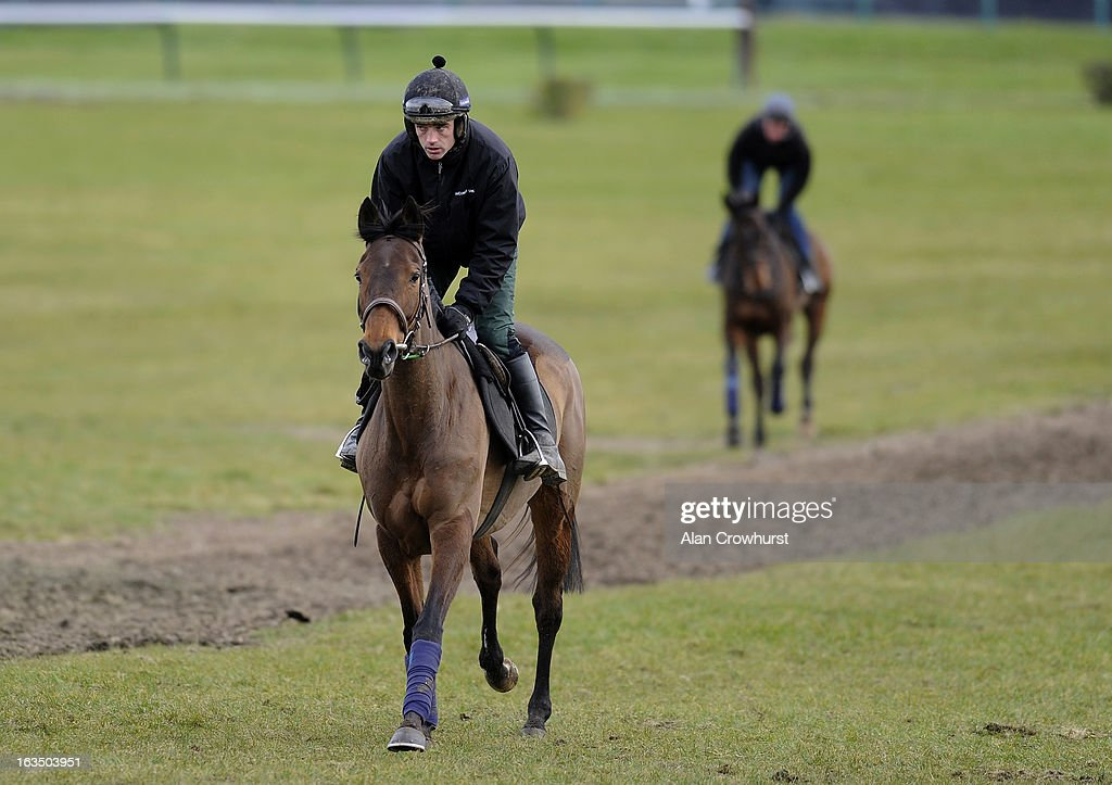 Ruby Walsh riding Quevega on the gallops at Cheltenham racecourse on March 11, 2013 in Cheltenham, England.