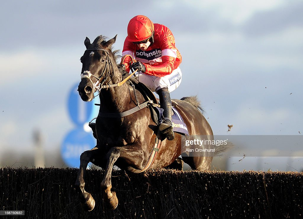 <a gi-track='captionPersonalityLinkClicked' href=/galleries/search?phrase=Ruby+Walsh&family=editorial&specificpeople=171838 ng-click='$event.stopPropagation()'>Ruby Walsh</a> riding Sanctuaire clear the last to win The williamhill.com Dersert Orchid Steeple Chase at Kempton racecourse on December 27, 2012 in Sunbury, England.