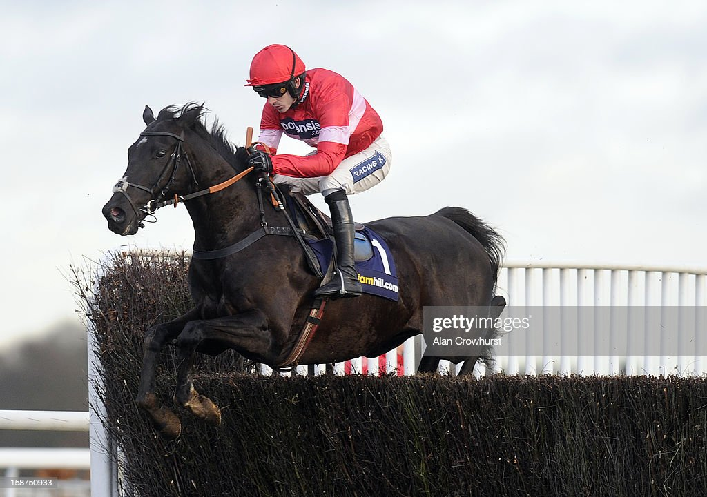 <a gi-track='captionPersonalityLinkClicked' href=/galleries/search?phrase=Ruby+Walsh&family=editorial&specificpeople=171838 ng-click='$event.stopPropagation()'>Ruby Walsh</a> riding Sanctuaire on their way to winning The williamhill.com Dersert Orchid Steeple Chase at Kempton racecourse on December 27, 2012 in Sunbury, England.