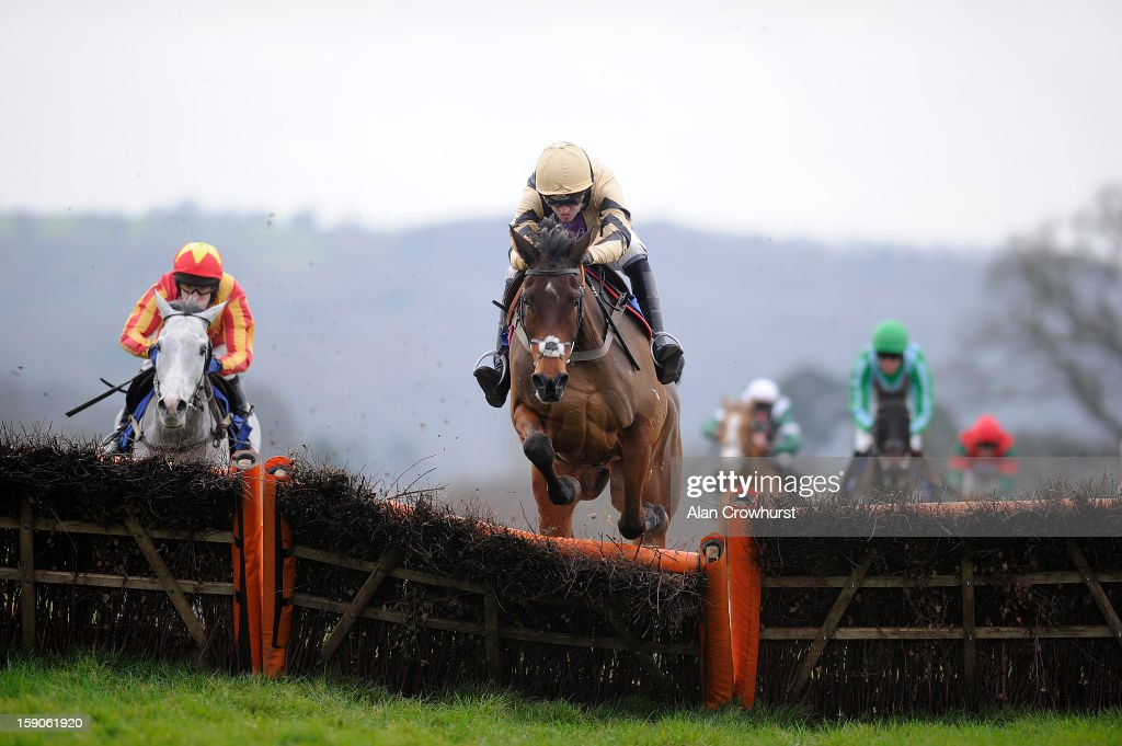<a gi-track='captionPersonalityLinkClicked' href=/galleries/search?phrase=Ruby+Walsh&family=editorial&specificpeople=171838 ng-click='$event.stopPropagation()'>Ruby Walsh</a> riding Sound Investment clears the last to win The Happy New Year Maiden Hurdle Race at Taunton racecourse on January 07, 2013 in Taunton, England.