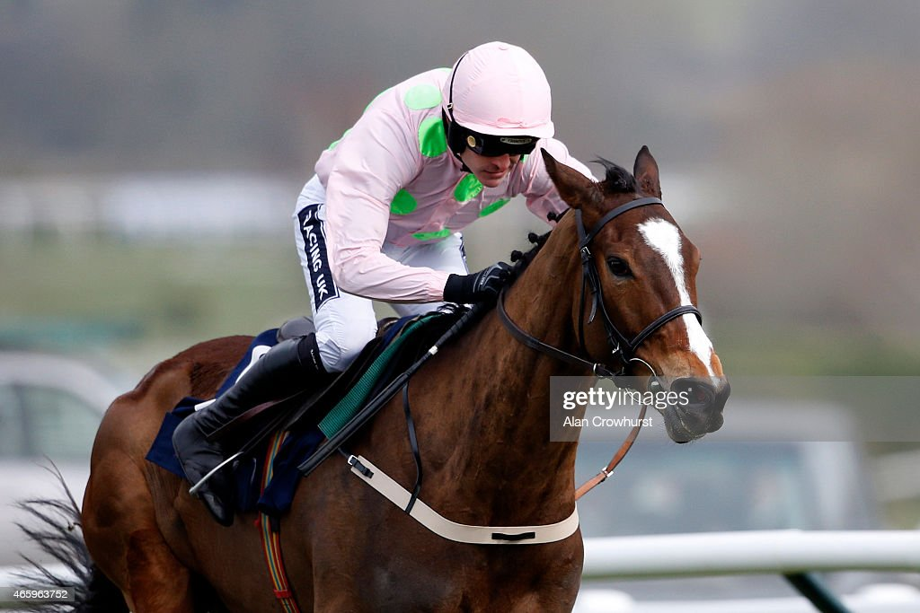 Ruby Walsh riding Vautour clear the second last to win The JLT Novices' Steeple Chase at Cheltenham racecourse on March 12 2015 in Cheltenham England