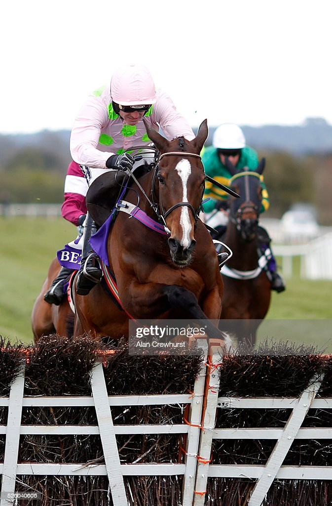 <a gi-track='captionPersonalityLinkClicked' href=/galleries/search?phrase=Ruby+Walsh&family=editorial&specificpeople=171838 ng-click='$event.stopPropagation()'>Ruby Walsh</a> riding Vroum Vroum Mag clear the last to win The BETDAQ Punchestown Champion Hurdle at Punchestown racecourse on April 29, 2016 in Naas, Ireland.