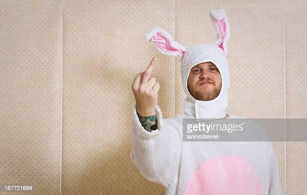Unfreundlich bunny