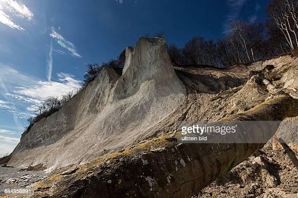 Ruegen erosion the chalk cliffs in the national park at the island of Ruegen in spring time April 08 MecklenburgWestern Pomerania Sassnitz Germany