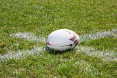 Rugby ball lying on the green grass on lineRugby ball lying on the green grass on line