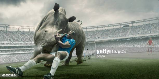 Rugby Player Tackling Rhino During Match in Outdoor Stadium