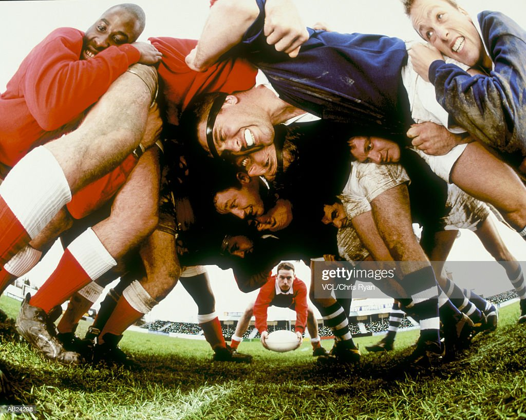 Rugby players in scrum : Stock Photo