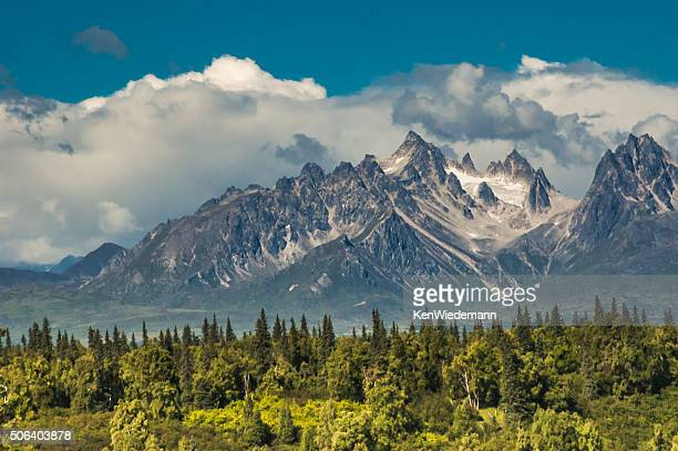 Denali is the highest mountain in North America and one of the most challenging due to punishing temperature and a topographic isolation.