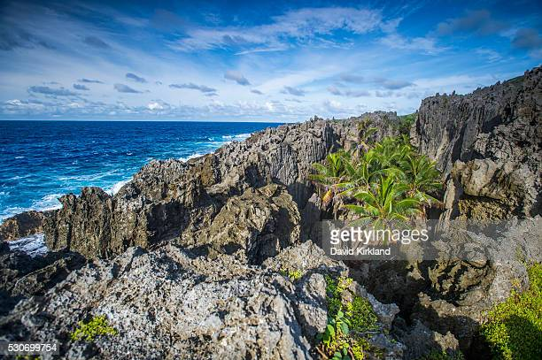Rugged coastline; Niue