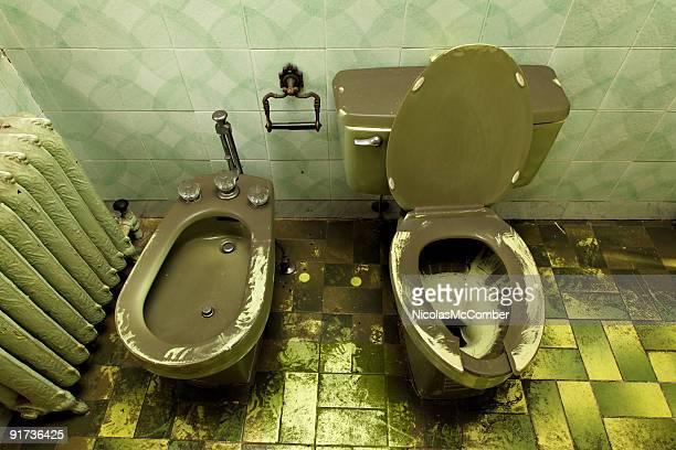 Ruined decrepit loo toilet and bidet