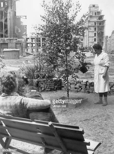 Baum Und Garten berlin nachkriegszeit pictures getty images