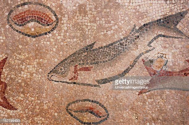 Ruins of Milreu Roman Villa Mosaic detail Estoi near Faro Algarve Portugal
