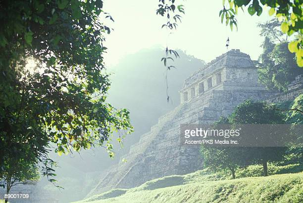 Ruins of Palenque surrounded by jungle