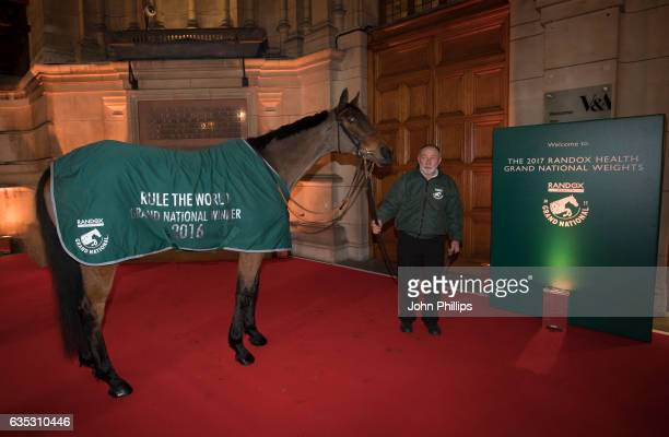 Rule The World attends The Randox Health Grand National Weights Evening at the Victoria Albert Museum on February 14 2017 in London England The...