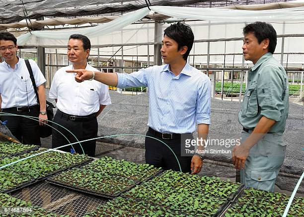 Ruling Liberal Democratic Party lawmaker Shinjiro Koizumi inspects an agricultural facility with the ZenNoh National Federation of Agricultural...